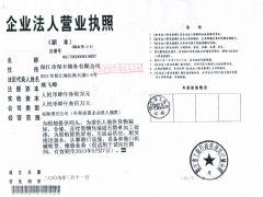 阳江市保丰港务有限公司证照略缩图