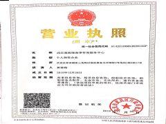 武汉楚海缘海事咨询服务中心证照略缩图
