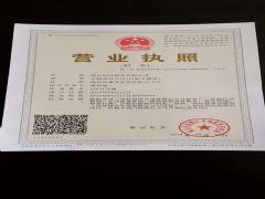南京创洋船务有限公司证照略缩图
