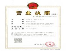 大信船务(深圳)有限公司证照略缩图