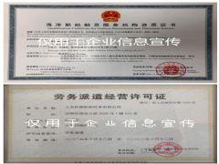上海帆顺船舶技术有限公司证照略缩图