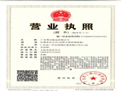 广东粤安航运有限公司证照略缩图