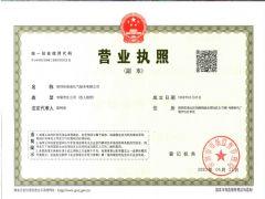 深圳华南液化气船务有限公司证照略缩图