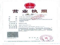 山东金江国际经济技术合作有限公司证照略缩图