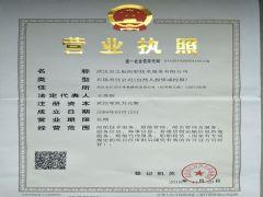 武汉启之航船舶技术服务有限公司证照略缩图