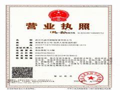 武汉兴盛洋船舶管理有限公司上海办事处证照略缩图