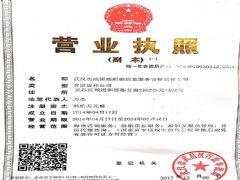 武汉杰成恒盛船舶信息服务有限责任公司证照略缩图