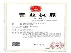 武汉天地国际劳务合作有限公司证照略缩图